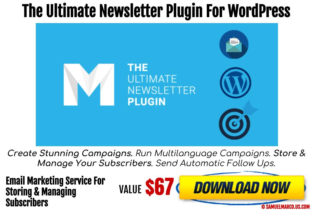 Mailster Newsletter WP Plugin